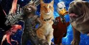 Karakter Hewan Marvel Banner 9f734