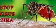 Virus Zika Banner