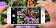 Cara Mengambil Foto Keren Dengan Iphone 11