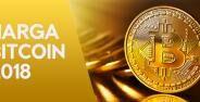 Prediksi Harga Bitcoin 2018 Paling Akurat