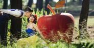 Tempat Wisata Romantis Bogor Banner 6e9a0