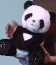 Boneka Panda Milik Google