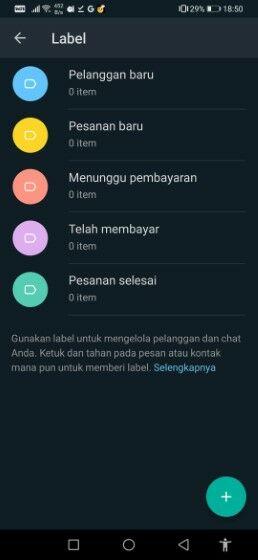 Whatsapp Business Gb 48823