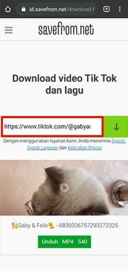 Cara Download Video Tik Tok Mp4 Ff20b