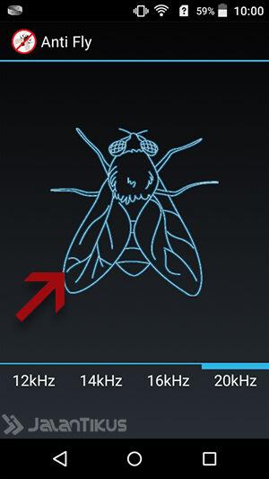 Cara Mengusir Lalat 2
