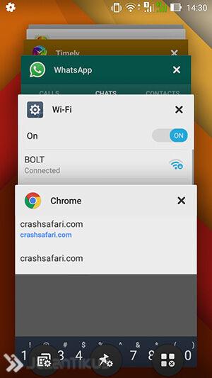 Crash Safari 3