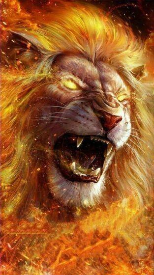 11 Foto Profil WA Singa Membara 5600a