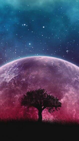 Tree Planet Stars Galaxy Custom 65be1