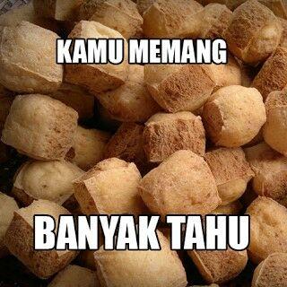 Meme Tahu 12