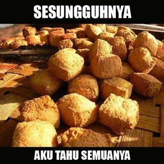 Meme Tahu 5
