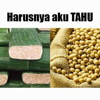 Meme Tahu 6