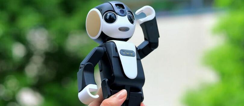 RoboHon, Si Robot Kecil, Lucu dan Canggih Pengganti Smartphone Masa Depan