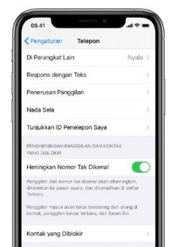 Panggilan Spam Ios 13 Custom 20f05
