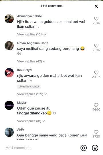 Komentar Netizen Arwana Tiktok Dc1b5