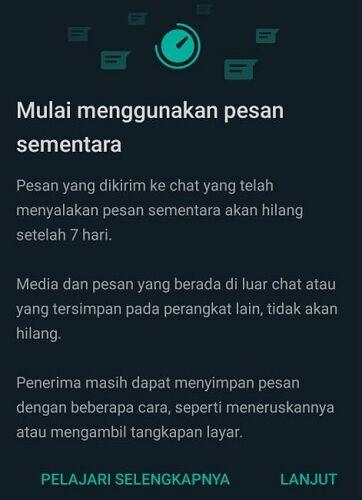 Pesan Sementara Whatsapp 2 22251