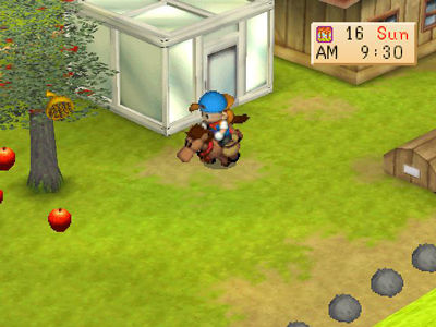 Harvest Moon Seeds Of Memories Pc Android Ios