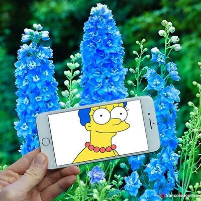 Foto Simpson Di Dunia Nyata 1