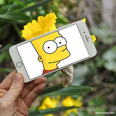 Foto Simpson Di Dunia Nyata 2
