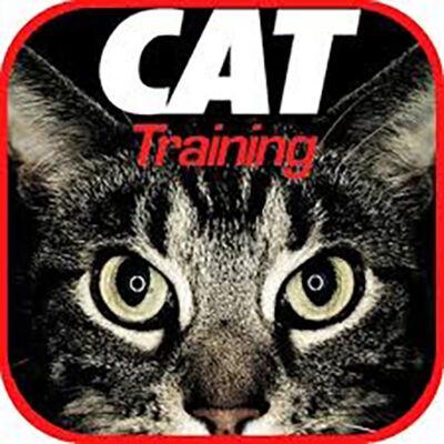 Aplikasi Tentang Kucing 8 C0904