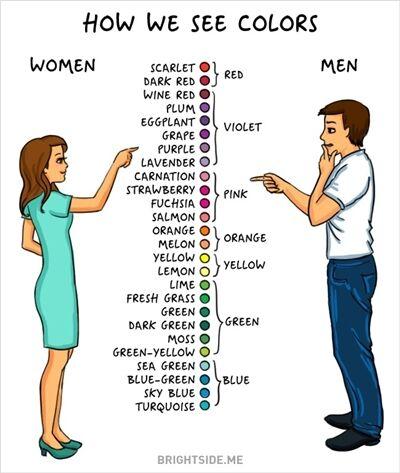 Perbedaan Laki Laki Dan Perempuan 9
