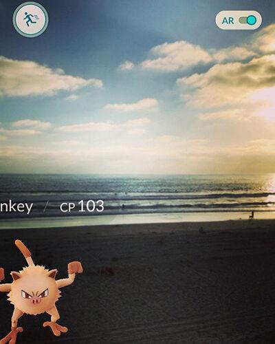 Lokasi Menakjubkan Pokemon 10