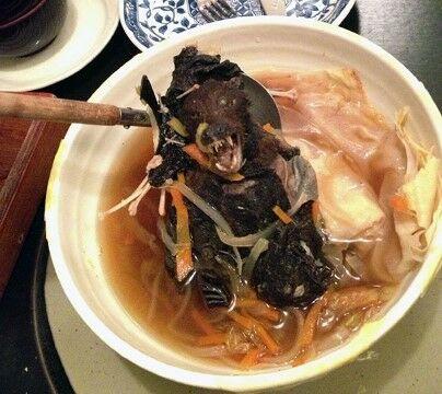 Sup Kelelawar 2 F48ae