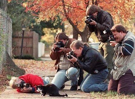 Fotografer 10