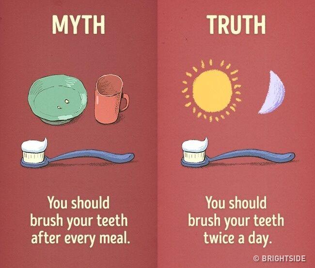 mitos-fakta-kebiasaan-sehari-hari-5
