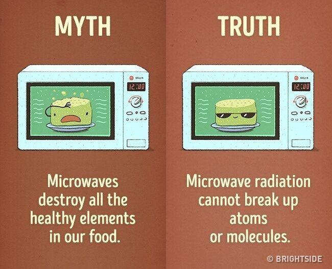 mitos-fakta-kebiasaan-sehari-hari-8
