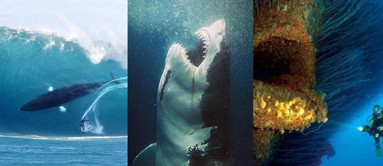 Kamu Penderita Thalassophobia? 15 Foto Kengerian Lautan Luas Bakal Bikin Kamu Merinding