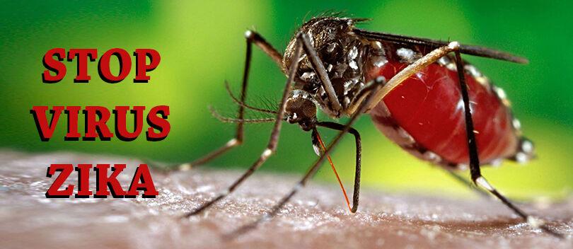 Cara Mencegah Virus Zika, Malaria, dan DBD dengan Aplikasi Android