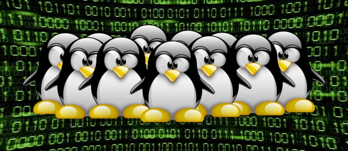 7 Alasan Kenapa Programer Lebih Suka Linux Dibanding Windows atau OSX