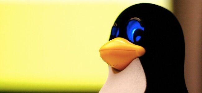 Awas PC RUSAK! Ini Dia 5 Perintah Terminal Paling Berbahaya Di Linux