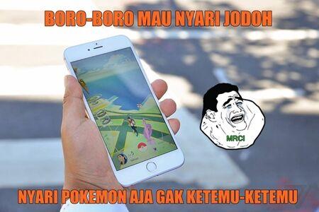 Meme Pokemon Go 27