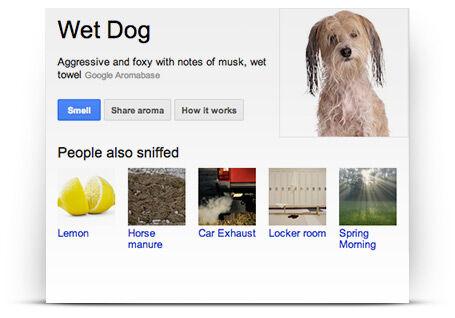 Google Nose Beta 1
