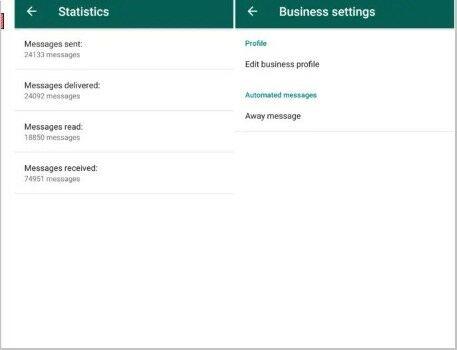 Whatsapp Business Pc 28940