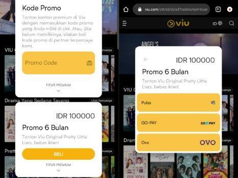 Viu Browser3 Custom E8827