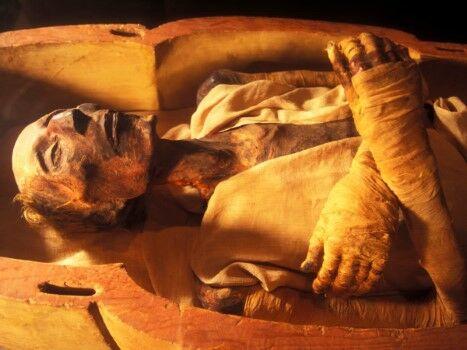 Mumi 5 Custom 52aea