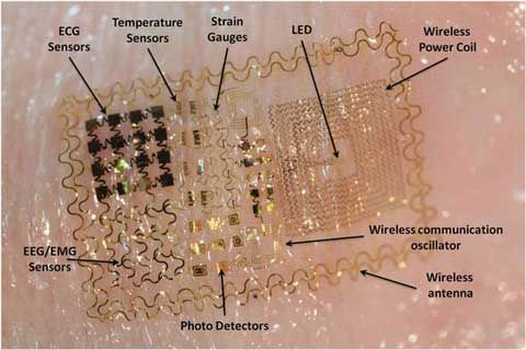 Biostamp Dari Motorola