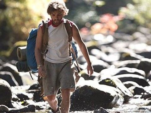 Into The Wild 272d2