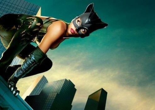 Catwoman D529d