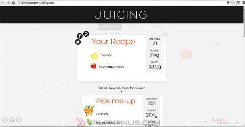 Panduan Lengkap Bikin Jus Sehat Via Website 3