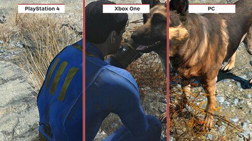 Fallout Pc Ps4 Xbox 1