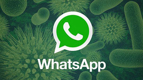 Email Scam Whatsapp 1