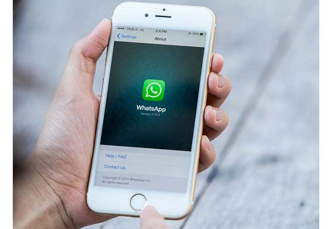 verifikasi-whatsapp