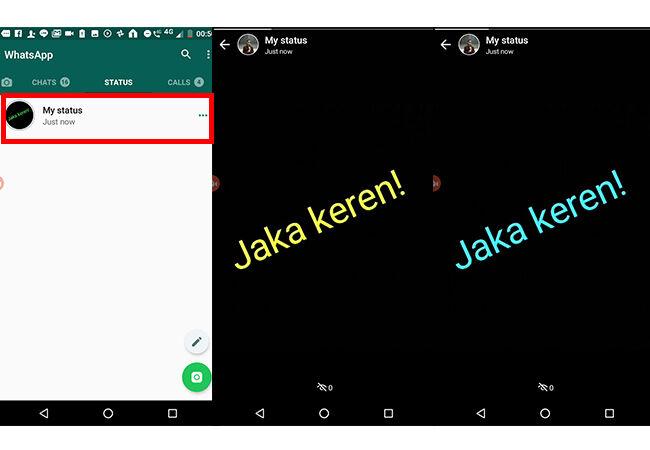 status-whatsapp-berkedip-6