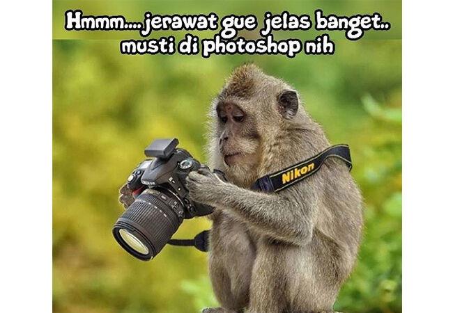 6000 Koleksi Gambar Binatang Lucu Dengan Kata Kata HD