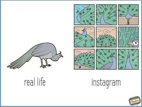Ilustrasi Menyindir Kehidupan Manusia Saat Ini 13