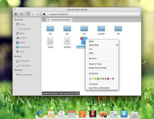 Elementary OS 10