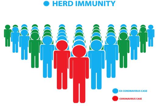 Herd Immunity 6b8f7